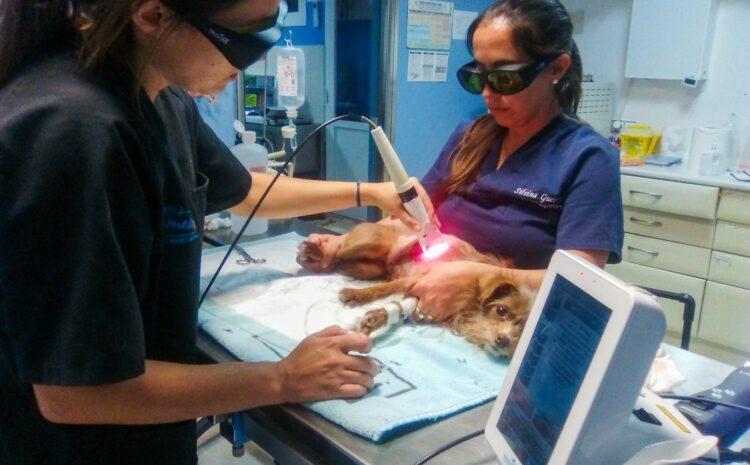 Tratamiento de una herida infectada con terapia con laser